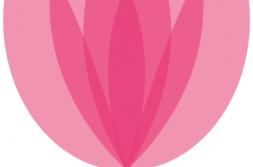 Omiljeni cvijet Ane Rukavine